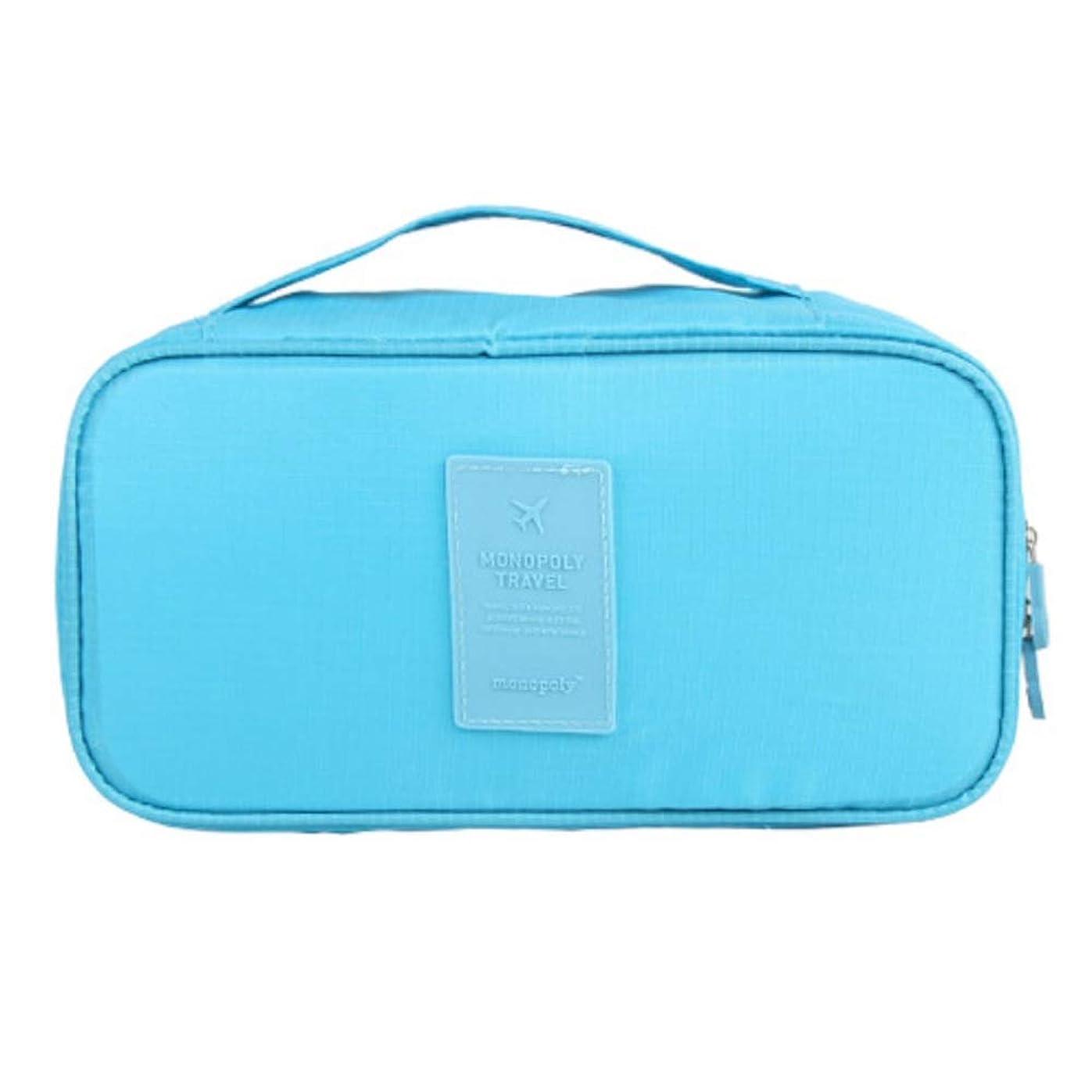 存在アイザック確立します化粧オーガナイザーバッグ 旅行用品旅行用シェービングヘアバッグ 化粧品ケース (色 : 青)