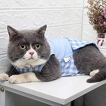 Cat Professional Recovery Suit Vêtements chirurgicaux pour les plaies abdominales Conception de la grille pour les chats Substitut du cône de collier E après la chirurgie