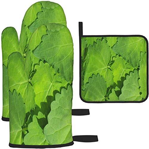 MODORSAN Einzigartige grüne Minze hinterlässt Ofenhandschuhe und Topflappen 1950 Stück Set Küchenofenhandschuh und Topflappen rutschfest zum Kochen Backen Grillen - als Farbe in Einheitsgröße