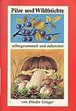 Pilze und Waldfrüchte - selbstgesammelt und zubereitet