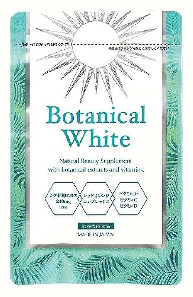 真珠のような机部門Botanical White(ボタニカルホワイト)30粒