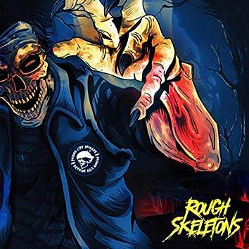 Rough Skeletons