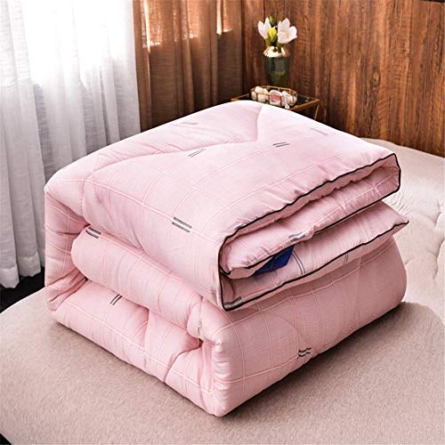 AMYZ Double duvet,winter warm duvet,comfortable and soft microfiber quilted duvet,thick quilted duvet,home gifts bedding(ColorE,180 * 220cm3kg)