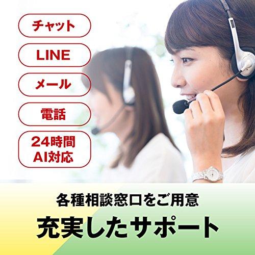 『BUFFALO WiFi 無線LAN ルーター WSR-300HP/N 11n 300Mbps 1ルーム向け 日本メーカー 【iPhone12/11/iPhone SE(第二世代)/Amazon Echo メーカー動作確認済み】』の7枚目の画像