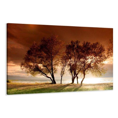Visario Bild & Kunstdruck der Deutschen Marke 120 x 80 cm 5025 Bilder auf Leinwand Kunstdrucke Bäume Wandbild