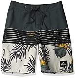 Quiksilver Boys Boardshort Swim Trunk, Urban Chic Everyday Division Youth 18, 23/10S
