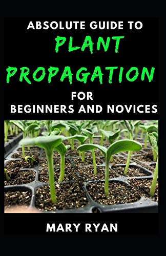 Absolute Guide To Plant Propagation For Beginners And Novices