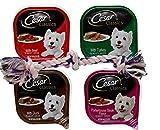 Cesar Classic Dog Food 4 Flavor 8 Can with Toy Bundle, (2) Each: Beef, Turkey, Duck, Porterhouse Steak (3.5 Ounces)