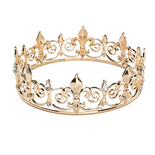 ZEXUAN Royal King Crown Men's Crystal Rhinestone Medieval Fleur De Lis Prom Party Tiaras Crown Costume Accessories (Gold)