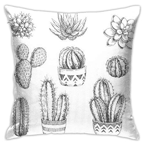 New-WWorld-Shop Zimmerpflanzen Kaktus Sukkulenten enbezug, versteckter Reißverschluss enbezug
