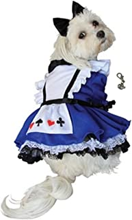 Puppe Looking Glass Alice Wonderland Dress Costume with Tea Cup Themed Charm and Bow Headpiece for Dogs - Sizes XS Thru L