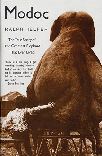 Modoc: True Story of the Greatest Elephant That Ever Lived (English Edition)