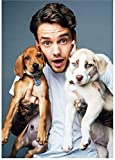 LAIDAO Canvas Poster One Direction Member Singer Liam Payne