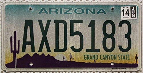 USA Nummernschild ARIZONA , US Kennzeichen KAKTUS WÜSTE Motiv , Blechschild