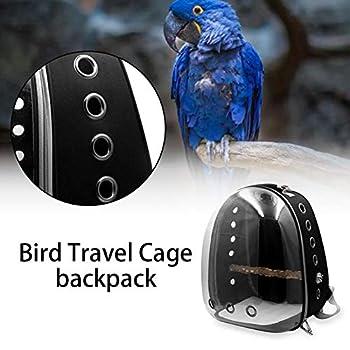 EZIZB Sac De Transport pour Oiseaux Transparent en PVC Sac à Dos de Transport Cage à Oiseaux pour Oiseaux Hamster Rat Gerbilles Bagage Transporteur Animal - 35x30x45cm