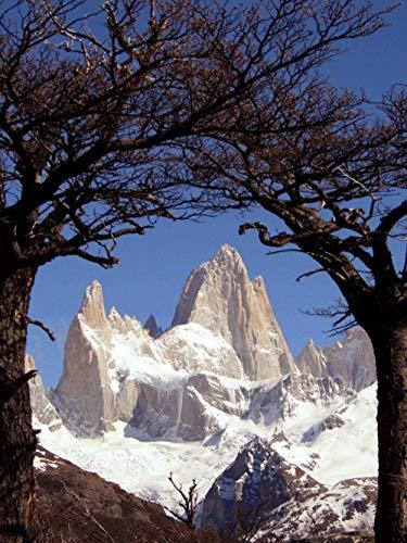 Rompecabezas de 1000 piezas patagonia argentina fitz roy cerro torre snow gran juego de rompecabezas ilustraciones para adultos y adolescentes