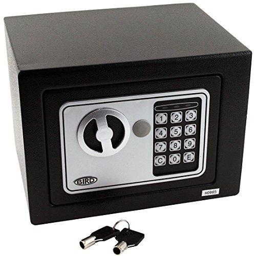 BIRD sicherer, digitaler Safe für Ihr Büro oder zu Hause, für Wand- oder Bodenmontage geeignet, 23 cm x 17 cm x 17 (B x H x T)