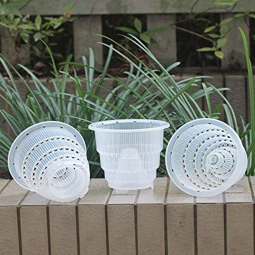 Meshpot transparente plástico–Maceta para orquídeas con agujeros–3piezas (2piezas 18cm + 1piezas, 14cm), 3 Pièces 14 cm