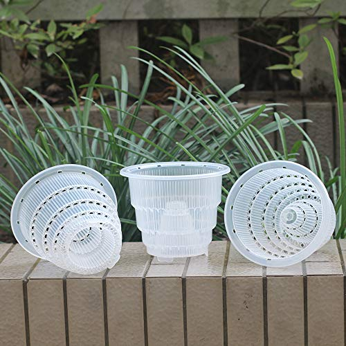 Meshpot 5 Inch Clear Plastic Orchid Pots With Holes - 3 Pack