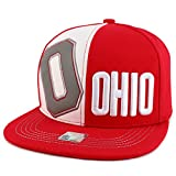 Trendy Apparel Shop American State Name 3D...