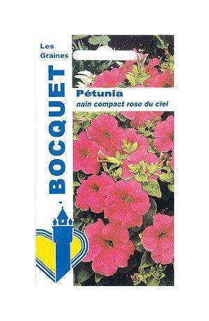 Les Graines Bocquet - Graines De Pétunia Nain Compact Rose Du Ciel - Graines Potagères À Semer - Sachet De 0.5Grammes