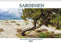Sardinien Knorrige Baeume in urwuechsiger Landschaft (Wandkalender 2022 DIN A3 quer): Ausdrucksstarke alte Baeume in beeindruckender Landschaft (Monatskalender, 14 Seiten )