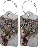 Colorido gatito adorable gato lengua Lage bolsa de cuero sintético para maletas, diseño de etiquetas de viaje con cubierta de privacidad con bucles de acero