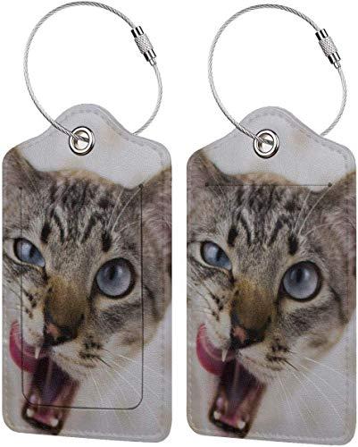 Buntes Kätzchen-Zungenanhänger, PU-Leder, Koffer-Etiketten-Design, Reise, mit Sichtschutz, mit Stahlschlaufen