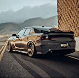 ZL1 Addons Stealth Two Piece Wicker Bill with Standard Edge - Compatible with 2015-2021 Charger