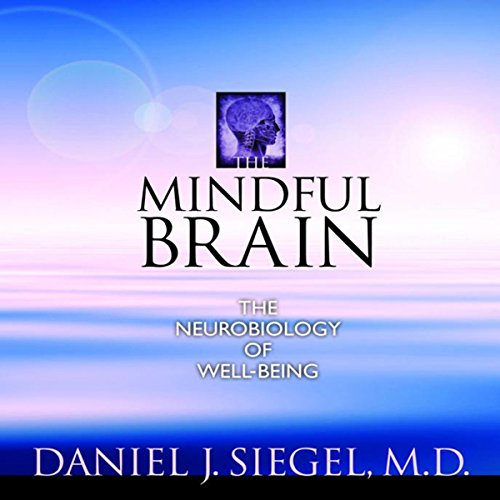 The Mindful Brain audiobook cover art
