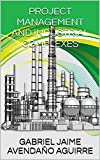 PROJECT MANAGEMENT AND INDUSTRIAL COMPLEXES: Mitigation of risks to consider in the management of industrial complexes (English Edition)