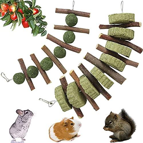 Juguete para Moler Dientes para Conejo Juguetes para Masticar Hámster Natural Bola de Hierba Bola para Conejos para Conejos Chinchillas Conejillos Indias Hamsters Mejoran La Salud Dental 2 Piezas