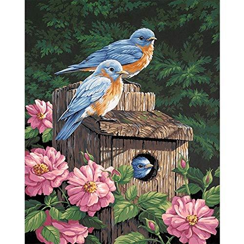 wwdfdd Diamond Painting DIY volledig kristallen strass borduurwerk vogelhuisje kruissteek-mozaïek knutselen volwassenen voor decoratie thuis (40x50cm)