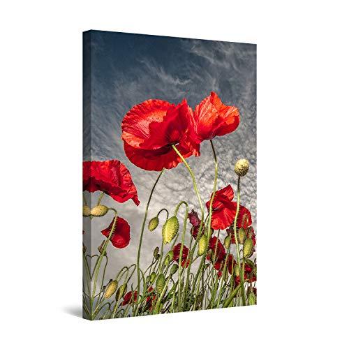 Startonight Impression sur Toile Coquelicots de Rouge Vif - Tableau Abstrait - Decoration Murale Salon Moderne - Image sur Toile - 60 x 90 cm