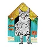 American Cat Club Summer Kitty Cove Cat House & Scratcher w/ Catnip, One Size