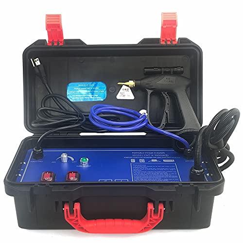 Limpiador a vapor de alta temperatura, 3000 W, portátil, 220 V, 3-5 bar, 100-130 °C, para aire acondicionado, campanas extractoras, alfombras, cortinas, asientos de coche