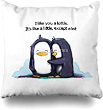 Ahawoso Throw Pillow Cover Square 20x20 Inches I Like You A Lottle Penguins Decorative Pillow Case Home Decor Pillowcase