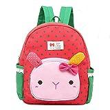 Suerico Kid Toddler Backpack Baby Boys Girls Pre School Bags Cute Cartoon Backpacks for Children 2-5...