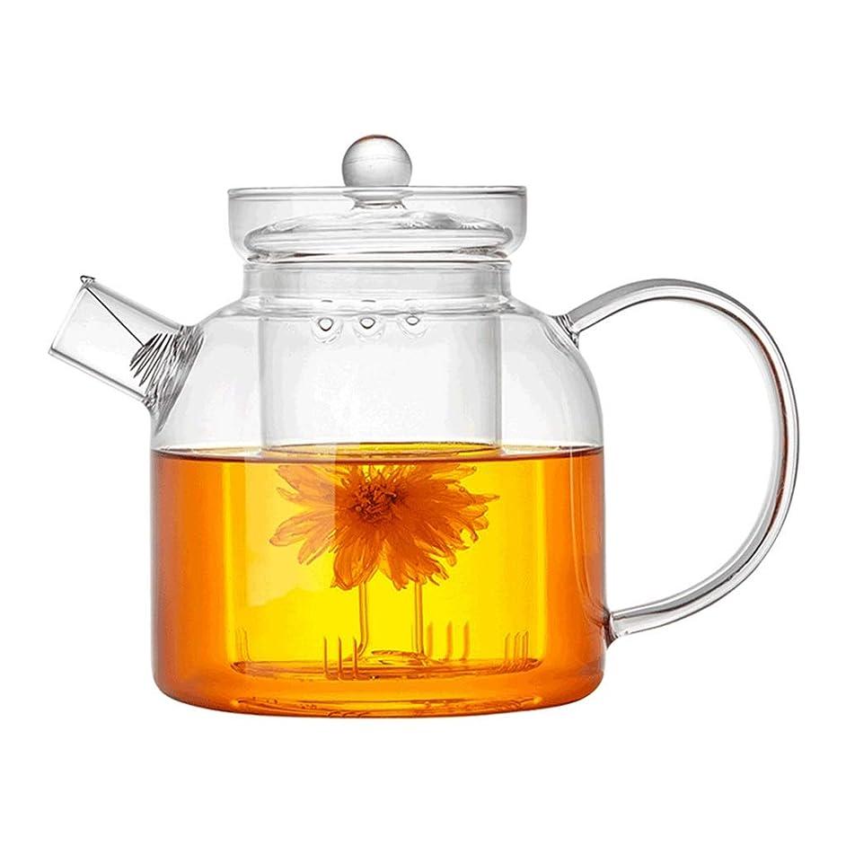 Teapots Coffee Servers Teapot Glass Teapot Home High Temperature Teapot Detachable Filter Glass Teapot Ice Coffee Pot Cold Drink Pot (Color : Clear, Size : 1000ml)