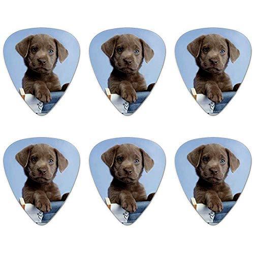 Chocolate Lab Labrador ligstoel Lounge Chair nieuwigheid gitaar picks medium gauge - set van 6