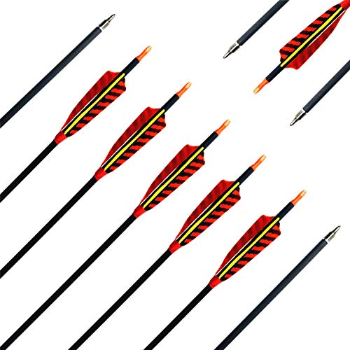 Letszhu Hunting Archery Carbon Arrow, Target Practice Arrow 500 Spine Fletched 4 inch Real Feathers with Field Points for Compound Recurve Longbow (Pack of 6) (31 inch)