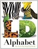 Wild Alphabet: An A to Zoo Pop-up Book
