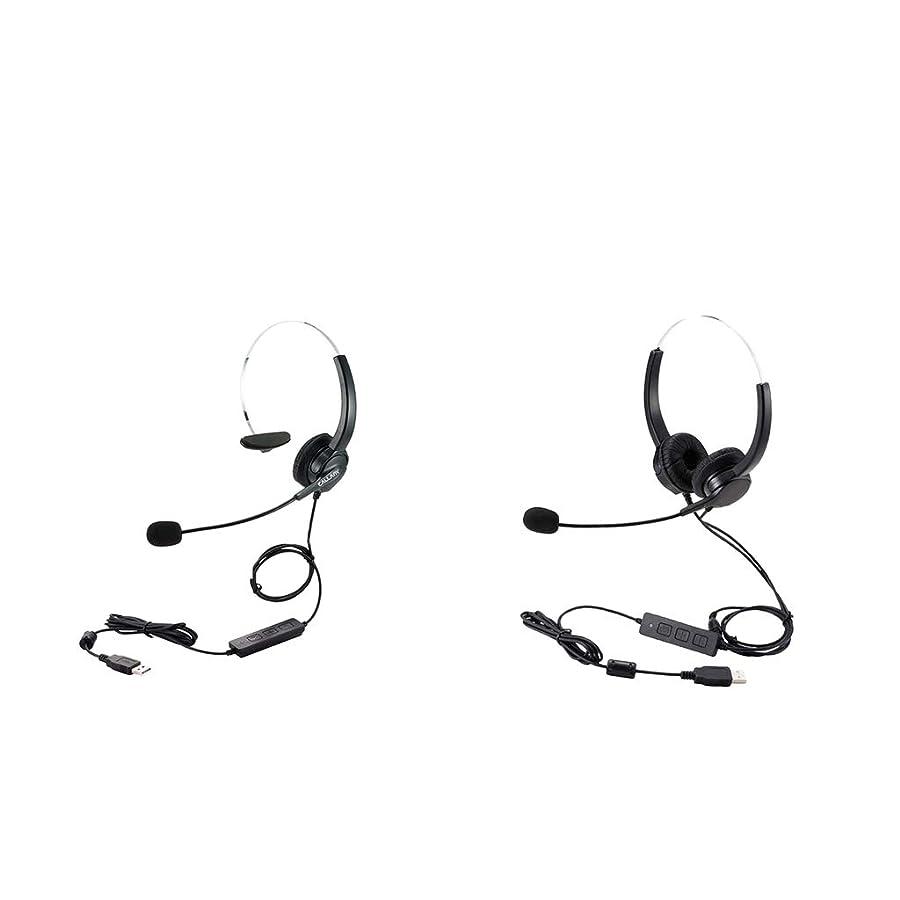 九月製造業交換可能D DOLITY USB ステレオ PC 通話用 内蔵マイク ヘッドセット ヘッドフォン ノートパソコン用 2ピース