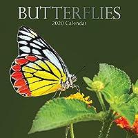 2020 蝶 壁掛けカレンダー 12 x 12インチ (閉じた状態)