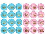 Pegatinas de Baby Shower Pegatinas de Revelación de Género Pegatinas con Purpurina del Alfabeto, Pegatinas de Team Boy y Team Girl para Decoraciones de Baby Shower, Suministros para Fiestas