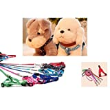 Welpen Blei Haustier kleiner Hund Nylon Drucken Halsband Gurt Leine Set Neck Einstellbare Farbe zuf?llig - 2