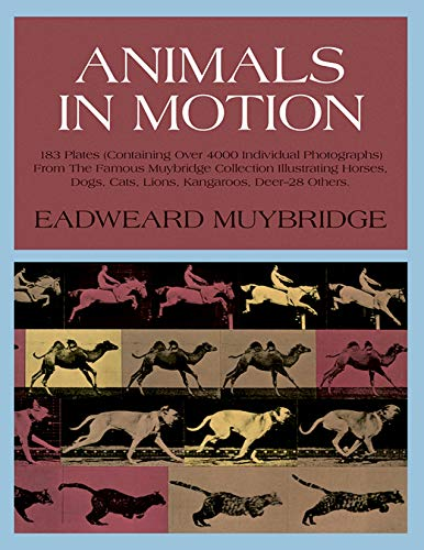 Animals in Motion (Dover Anatomy for Artists)の詳細を見る
