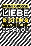 Notizbuch liniert: Meine große Liebe ist ein Perro de Agua Espanol