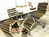 Lurowo 8 Stück Hamster Kauspielzeug Natürliche Holz Kauen Spielzeug