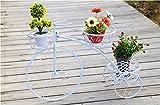 Asnvvbhz Soporte para plantas, estantes para flores de hierro forjado, estanterías para bicicletas de pie y al aire libre de múltiples capas, estantes para flores en forma de eneldo verde, estantes pa